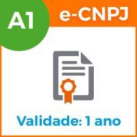 e-cnpj-a1-1ano