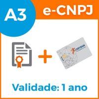 e-cnpj-a3-1ano