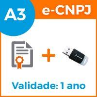 e-cnpj-a3-1ano-token